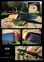 CCCB - montage - 23 octobre 2014 by Arnolf