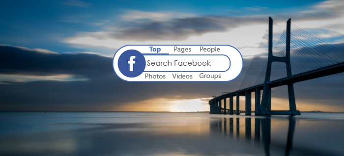 FacebookSearch 1.0 by kyriakos098