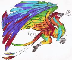 Macaw Dragon Adoptable -CLOSED- by Emi-Kay