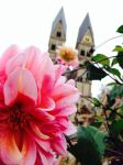 Church behind the flower by soulpacifica