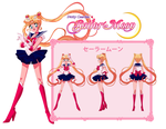 Sailor Moon Character Sheet by scpg89