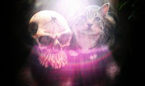 Rainbows and Skulls by tattooed-psychosis