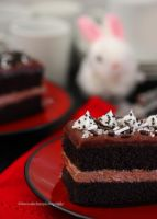 Homemade Dark Chocolate Fudge Cake by theresahelmer