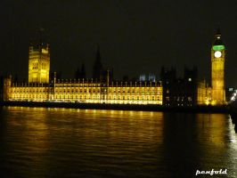 Parliament by penfold5