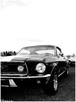 Mustang by alexisuk