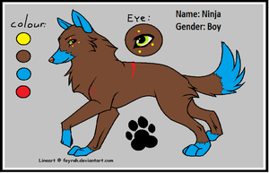 My New OC. by Kihomi-doglover