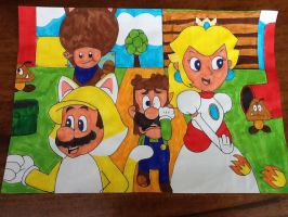 Super Mario 3d world by Iwatchcartoons715
