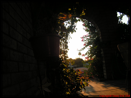 Archway by TaoPhotography