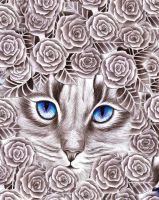 roses cat by FadwaAngela
