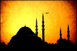 light of istanbul by Pithana