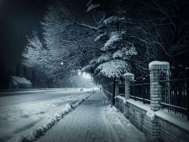 winter in night II by danamis