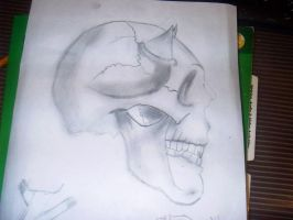 kaged -Skull Side Profile- by DraeX