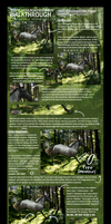 EQUINE MANIPULATION WALKTHROUGH by mockingale