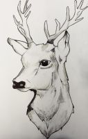 deer by darkheizt