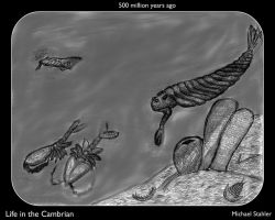 Life in the Cambrian by Eco727