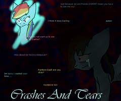 Crashes And Tears by rosetheeevee12