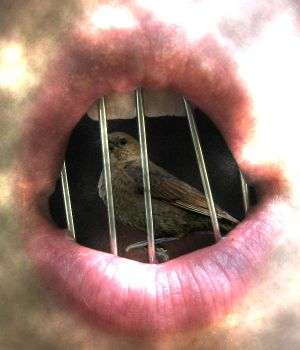 know why the caged bird sings by wikki3