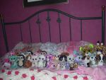 Beanie Boos Collection by GoshyYoshi