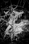 Icicles by DanielGliese