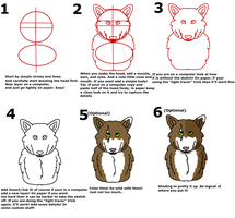 How To Draw a Wolf #2 |Tutorial by SnowyTheSnowFox