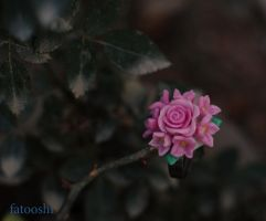 Pink flower by fatooshi
