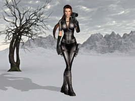 Silver Raider by tombraider4ever