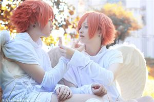 Ouran: Sweets by Feeri-Theme