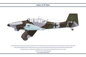 Ju 87 StG 167 1 by WS-Clave