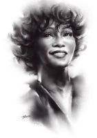 In Memory of Whitney Houston - Painting Video by Feohria