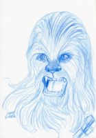 Not Wise To Upset a Wookie by AokiBengal