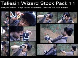 Taliesin Wizard Stock Pack 11 by Durkee341