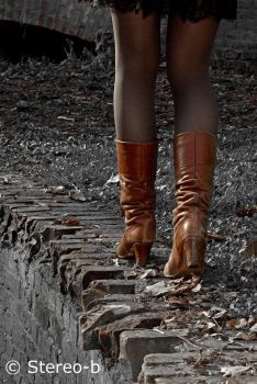 brown boots 6 by stereo-B