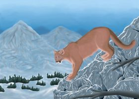 Mountain Lion by Crystal-Ice47