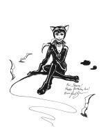 Catwoman by cat-gray-and-me78