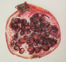 Pomegranate by Spacewoman-Spiff