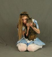 Alice in Wonderland 3 by MajesticStock
