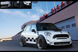 Mini Countryman race by asoares