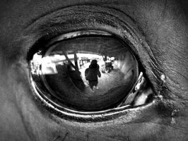 I see You by Kubka