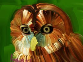 Saw Whet Owl Abstract by barnowlprincess28