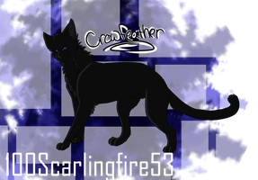 Crowfeather by 100Scarlingfire53