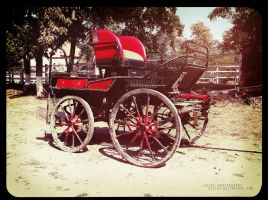 Carriage by Sk1zzo