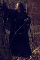 witch hostess of the forest3 by VAMPIdor