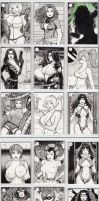 Sketch Card Lot 1 by rplatt