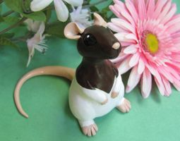 Ratty by DragonsAndBeasties