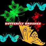 Butterfly Brush by X-netic