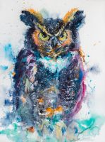Great horned owl by kovacsannabrigitta