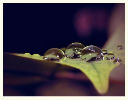 morning dew by br3h