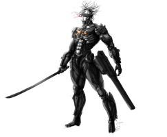 Raiden - Metal Gear Rising Revengeance [Improved] by visualinfinity