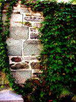 Summer Wall by blindtetra