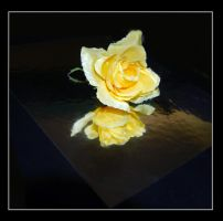 Reflected In Yellow by Me2Smart4U